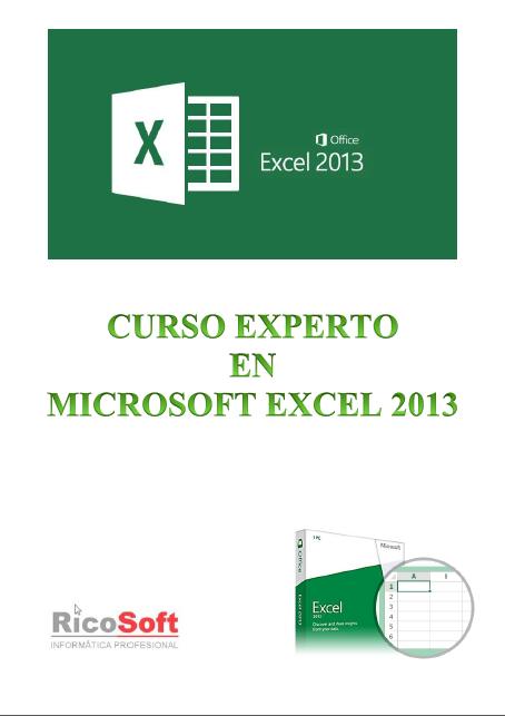 Book Cover: Curso Experto en Excel 2013